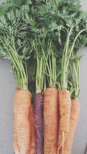 Carrots Orange Leaves Fresh Produce Fresh Vegetables