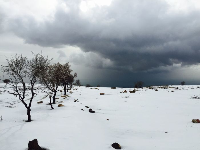 Black Clouds White Snow Amazing Trip Happy :) Trees Romanticweather No Filter