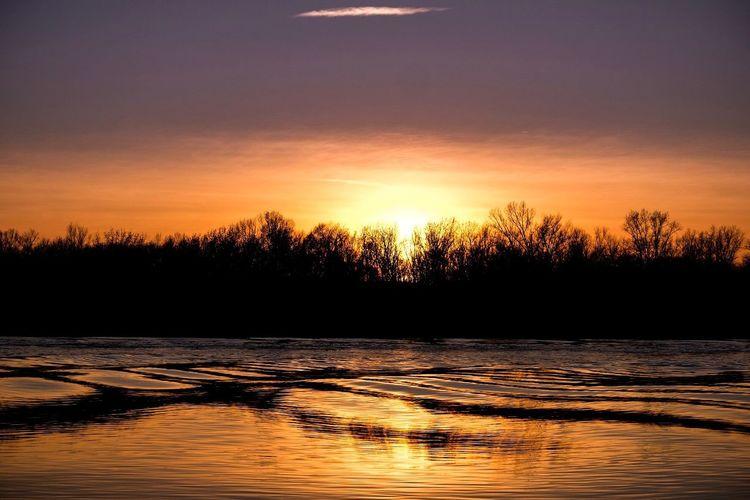 Diese kurzen Minuten, wenn der Rhein zu flüssigem Gold wird 😍 EyeEm Sunset EyeEm Nature Lover Evening Sun Evening Sunset Tree Reflection Beauty In Nature Nature Scenics Silhouette Water No People Tranquil Scene Tranquility Outdoors Sun