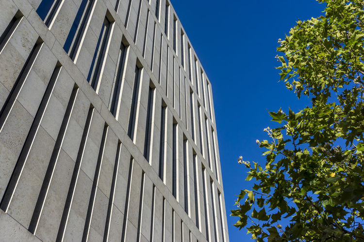 Humboldt University building in Berlin, Germany Architecture Berlin Building Exterior Built Structure Color Image Day Germany🇩🇪 Horizontal Humboldt University Berlin Jocob-and-Wilhelm-Grimm Center Low Angle View No People Outdoors Photography Sky Skyscraper Tree