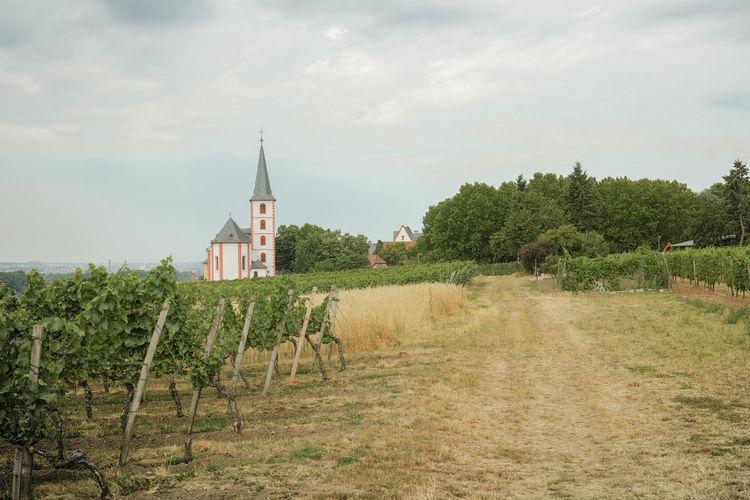 Kirche im
