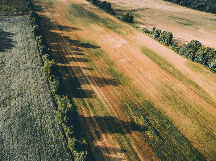 Drone photo out in the fields and forests of my cottage in Russia Aerial Beauty Day Drone  Farm Field Forest Landscape Nature Nature No People Tree