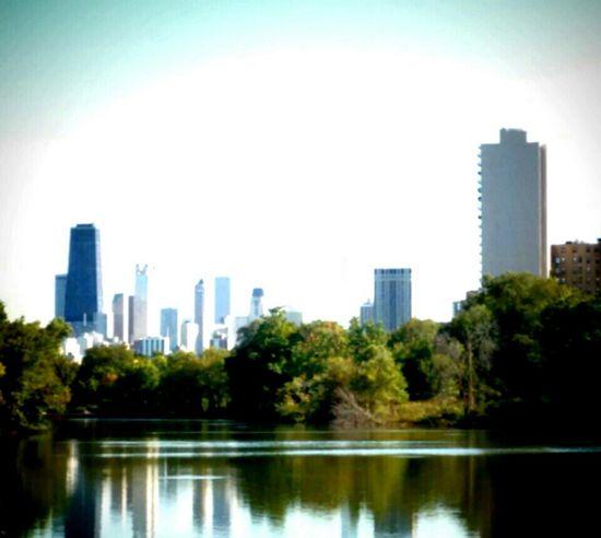 Lincoln Park Cityscapes North Pond City Skyline