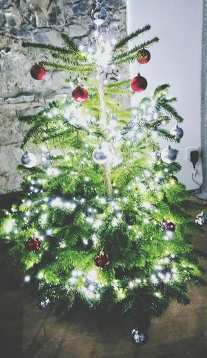 """Unser Weihnachtsbaum in unserem """"zu Hause"""" hier in Garmisch🎄🎄🎄 Our Christmas tree at our """"home"""" here in Garmisch 🎄🎄🎄 FRÖHLICHE WEIHNACHTEN 🎅🎅🎅🌟🌟🌟 MERRY CHRISTMAS 🎅🎅🎅🌟🌟🌟 P👩❤ Green Color Indoors  No People Christmas Tree Christmas Decoration Christmas Close-up"""