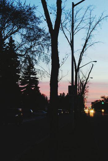 Colors Nighttime NikonD3100 Alberta Edmonton, AB Yeg Vehicles Hometime