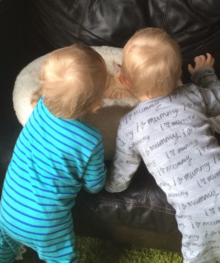 Different veiw Kitten With Twin Boys Learning To Be Gentle Childhood Boys Muswell Hill Innocence Togetherness Ginger Kitten TWINS ♥ Twins With Kitten Muswellhill Fresh On Eyeem  Adorable Precious Moments Of Life Enjoy The New Normal Popular