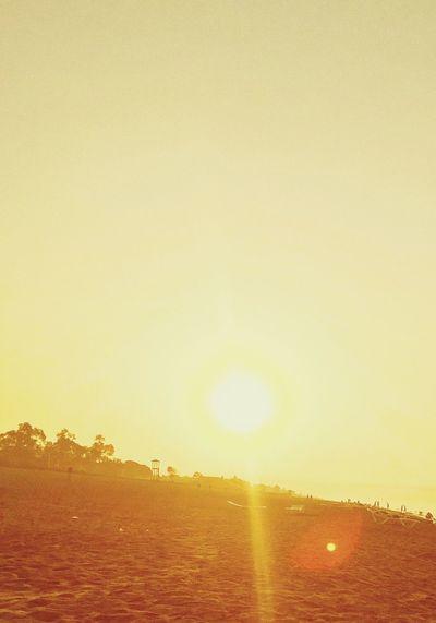 Sunbech