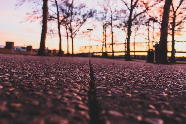 Into the light... Park Concrete Gravel Ohio, USA Ohio Queencity 513 Cincinnati Ohio Cincinnati Wessography Sunset Selective Focus Surface Level Tree Nature Autumn Outdoors Sky EyeEm Ready   AI Now EyeEmNewHere