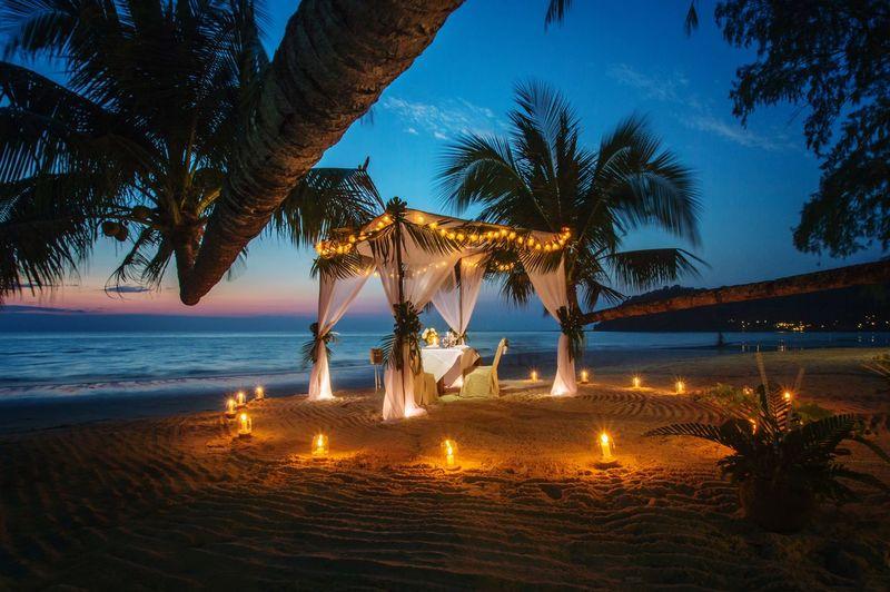 Palm trees on beach against sky at dusk