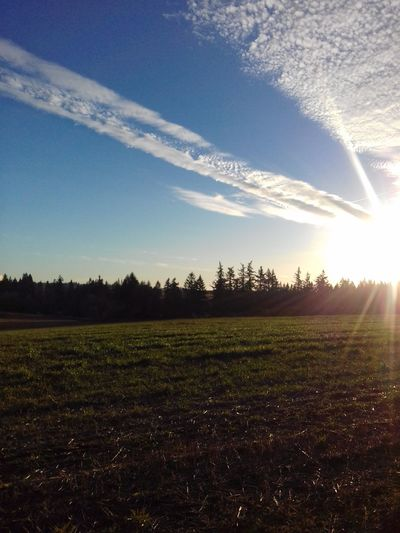Sunlight Nature Outdoors No People Landscape Beauty In Nature Tree Sky Sunbeam Cloud - Sky Rural Scene Country