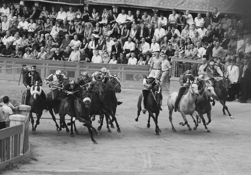 Domestic Animals Horse Mammal Horseback Riding Horse Racing Men Large Group Of People Spectator Sports Race Real People Gambling Competition Outdoors Adult Sports Track Day Only Men Adults Only People Palio Di Siena Palio Tuscany Countryside Tuscany Italy Siena