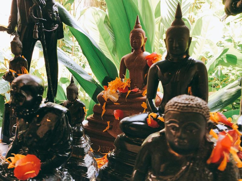 Buddha statue 🙏🏻 Flower Merit Temple Morning Leaves Leaf Green Color Thailand Asian  ASIA Ecclesiastic Monk  Buddhism Buddha Belief Religion Human Representation Spirituality Art And Craft Day Representation Sculpture Statue Creativity Outdoors No People