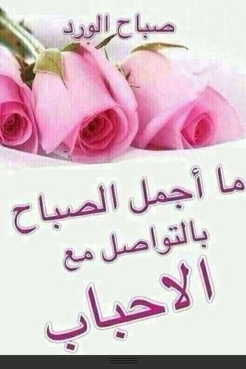 صبآح الخير ... ! صبآح الورد~ صباح الورد مساء الورد صباح الخير صباح الحب