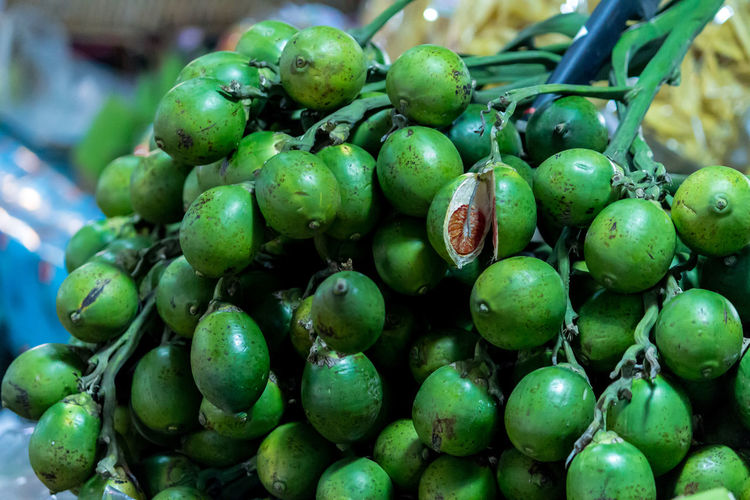 Areca Catechu Linn Betel Nuts Close-up Day Food Food And Drink Freshness Fruit Green Color Growth Healthy Eating Large Group Of Objects Nature No People Outdoors Raw Betel Nut Tree Unripe