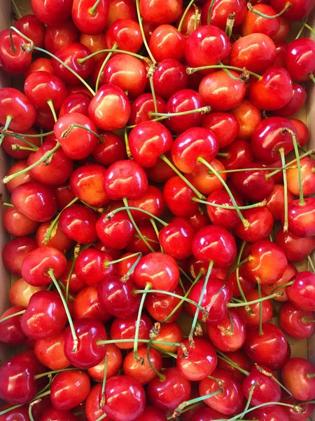 Japanese cherry 🍒🍒🍒 Red Abundance Food And Drink Full Frame Freshness Large Group Of Objects Food Backgrounds Healthy Eating For Sale No People Market Close-up Day Fruit Outdoors Eye4photography  My World Of Food Japanese Food Taking Photos Healthy Food