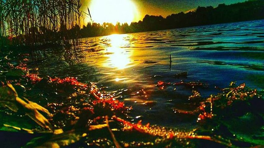 Sunset Super_sunset Rsa_sunset Like4like Sunsets Srs_sunset Rsa_nature Rsa_water Likeforlike Super_polska Match_colour Photooftheday Ig_photolove Ig_photography