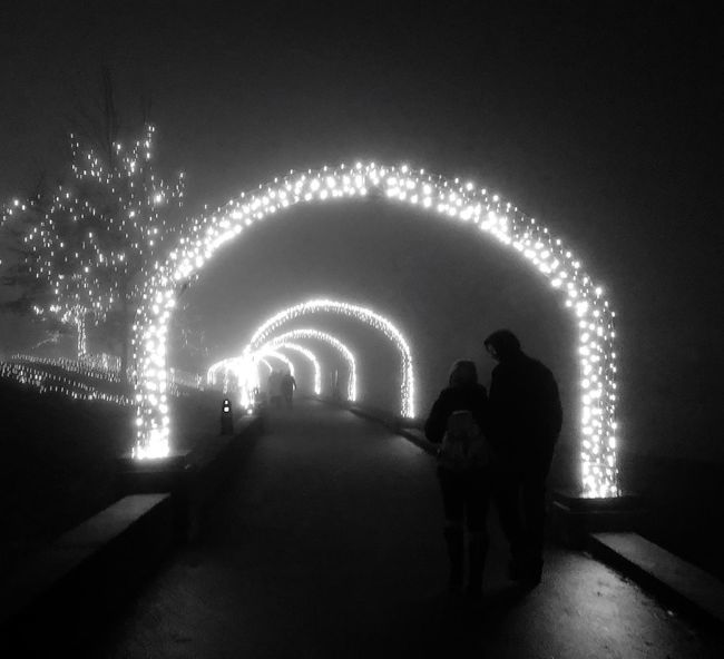 Lovers winter stroll Winter Nights ❄ Coquitlam Stroll At Night Stroll Lovers Nightlights Nightphotography Christmas Lights Foggy Night Fog Night Real People Illuminated Men Silhouette Leisure Activity Rear View Togetherness Lifestyles Outdoors Two People Standing