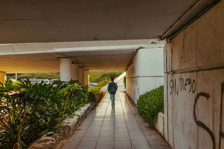 Mornings with Erik One Person Architecture Real People Bridge Architectural Column Direction Walking Plant The Way Forward Casual Clothing Lifestyles Built Structure Rear View Men Las Palmas De Gran Canaria