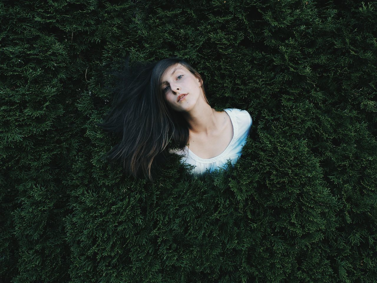 Young woman in tree
