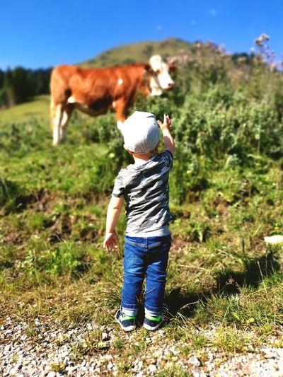 Rear view of boy standing in a field
