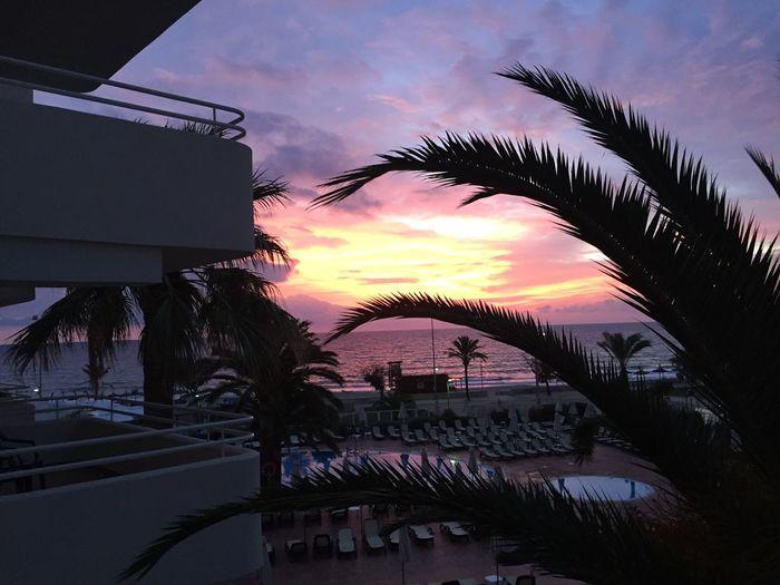 Sonnenaufgang 😎😊 Relaxing