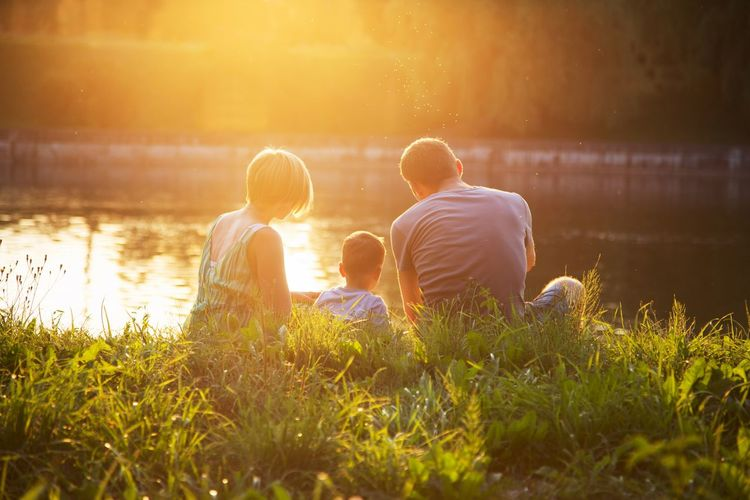 Men Togetherness Grass Rear View Sitting Males  Leisure Activity Boys Bonding Two People Nature Sunset Family Real People Child Lifestyles Childhood People Adult Positive Emotion Outdoors Son Lens Flare Summer Family