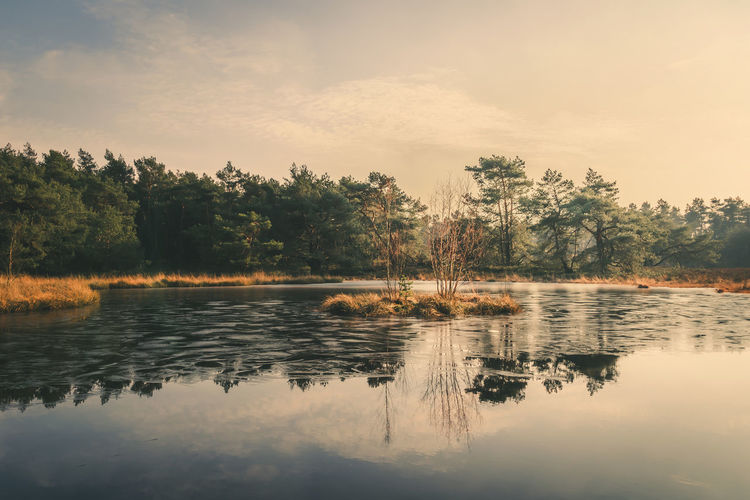 Veluwe Beauty In Nature Day Forest Lake Nature No People Outdoors Reflection Scenics Sky Sunset Tranquil Scene Tranquility Tree Water Waterfront