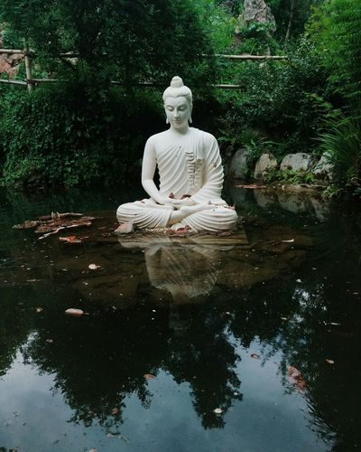 Tree Water Sculpture Statue Sitting Inspiration Reflection Human Representation Water Lily Water Plant Buddha Floating On Water Watercolor Painting
