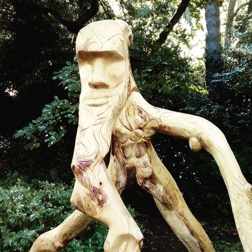 Tree sculptute
