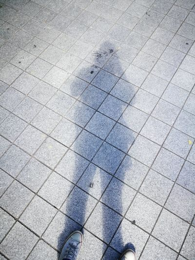 Self shadow...