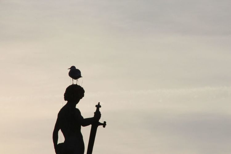 Cloud - Sky Day Jardin Du Luxembourg Outdoors Paris People Silhouette Sky Statue Sunset