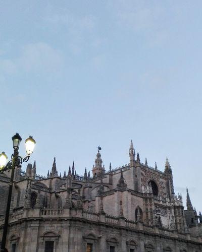 Hello World Catedral De Sevilla Giraldillo Enjoying Life My Town Mi Ciudad España🇪🇸 Lugares Con Encanto Monument BuenisimosDiaaaas