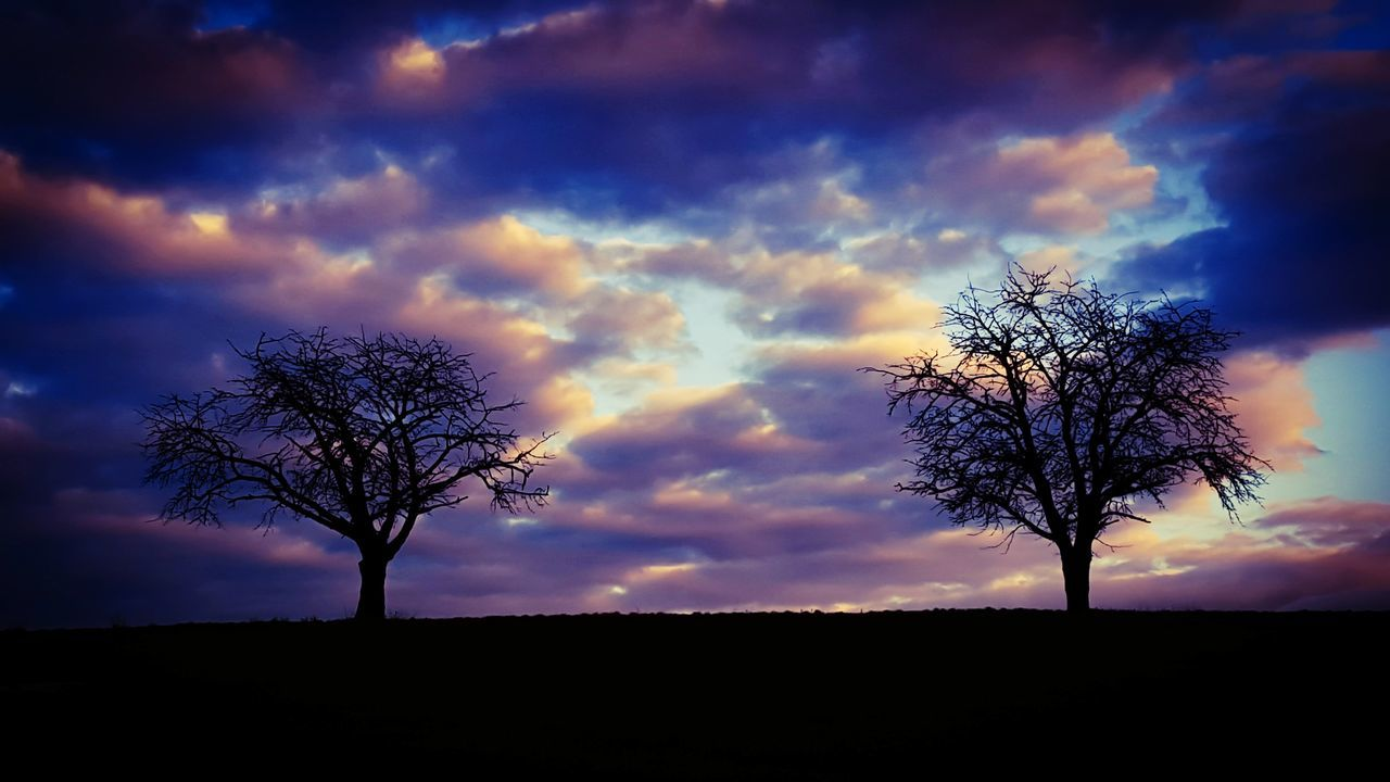 Silhouette Of Bare Trees Against Dramatic Sky During Sunset