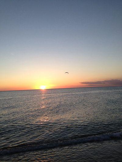 Alba Sunrise Ferragosto Sole