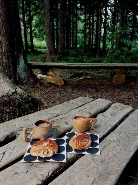 Table Food And Drink Refreshment Day No People Outdoors Plate Tree Food Nature Coffee Time Kuksacup Sweet In The Forest Picnic Trees Summer Trip Enjoying Nature Finland Summer Trip Wooden Furniture Bench