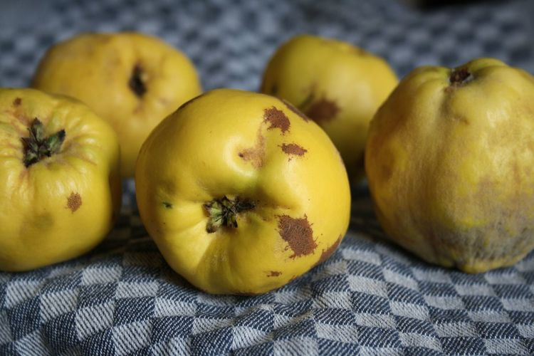 Quinces Quince Quitte Healthy Lifestyle Fruit Close-up Indoors  Healthy Eating Food And Drink Food Freshness Yellow Textile Vitamin No People Blue Pattern Autumn Fall