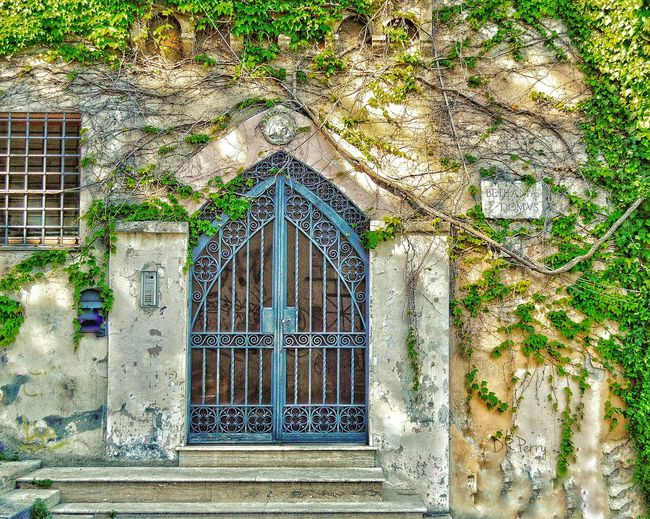 Trastevere Door Doors Of Distinction Doors Doorsworldwide Doorway Doorsandwindows Gate Photobydperry Wrought Iron Wrought Iron Design Wrought Iron Gates Wrought Iron Gate