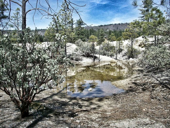 Puddles! Goldmining California Hydraulic Malokoff Diggins State Park  Openspace Having Fun :) Traveling Natural Beauty
