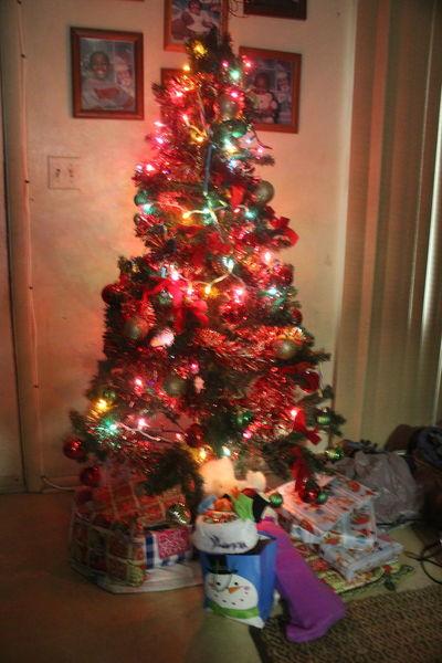 Christmas Christmas Tree Culture Holiday Holidays Lights Merry Christmas! MerryChristmas Presents Red Xmas Xmas Decorations