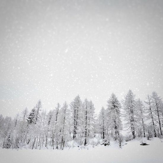 Snow Mountains Carona Winter