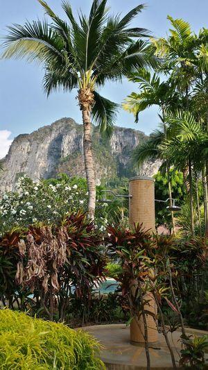 Thailand Ao Nang Showers Palm Trees Hotel Garden Learn & Shoot: Layering Rocky Mountains Felsen