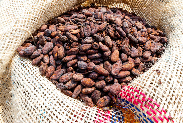 High angle view of freshly dried cocoa beans in rustic jute bags to transport
