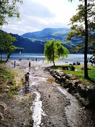 Nature Tree Mountain Day Water Lecco Lake Paceful Relax Brianza First Eyeem Photo
