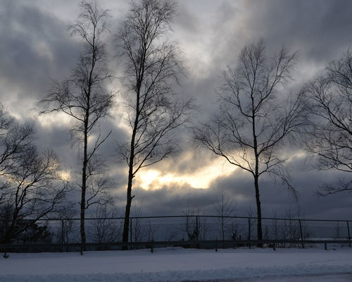 Cloud Cloud - Sky Clouds Clouds And Sky Cloudy Cold Cold Temperature Dark Darkness And Light Light Nature No People Outdoors Photography Rack Sky Snow Sunrise Sweden Taberg Top Tree Weather Winter Winter