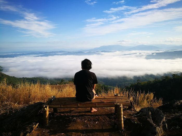Rear view of woman sitting on bench at observation point
