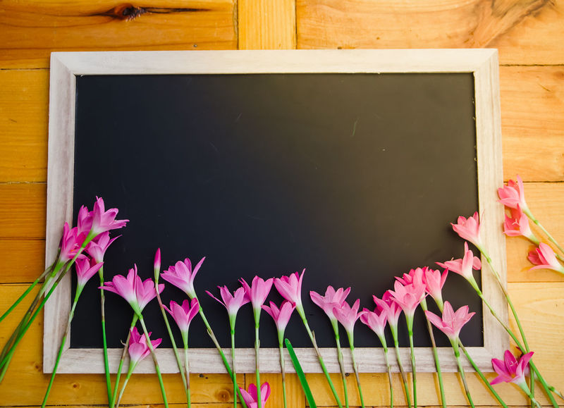Pink Color Plant Flower Flowering Plant Indoors  Wood - Material Blackboard  No People Board Table Close-up Art And Craft Nature Directly Above Creativity Petal Beauty In Nature Wood Education Still Life