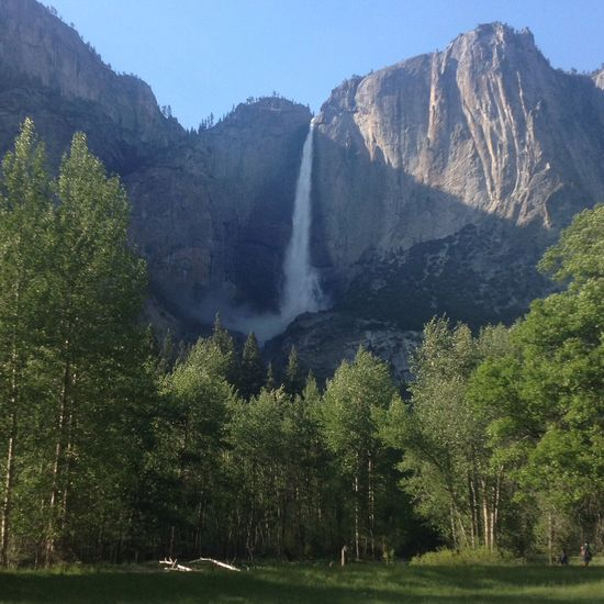 Beauty In Nature California Landscape National Park Scenics Water Fall Yosemite Falls Yosemite National Park