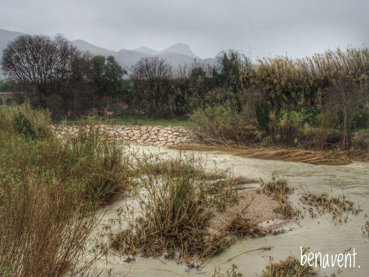 Riu Rio Passeigsotalapluja Lluvia. 📷 Beauty In Nature Valencia, Spain Pluja Eyemphotography No People Serpis La Safor River Serpis