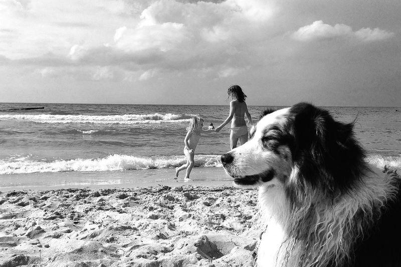 Blackandwhite Enjoying The Sun On The Beach Meeting Friends