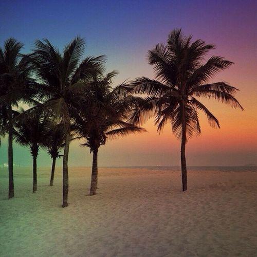 Colored coconut